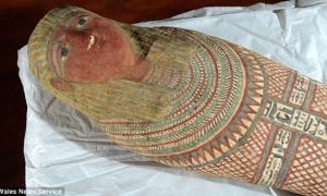 Infant-sized ancient Egyptian sarcophagus