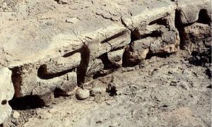 7th century BC inscription in Georgia