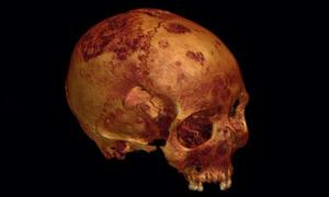 A rendering of the ancient skull created from CT scans.