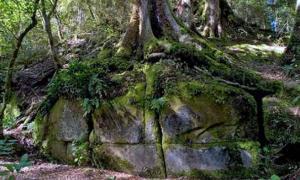 Kaimanawa wall - New Zealand