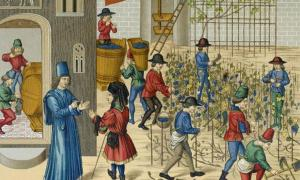 Representation of life in medieval Europe at a vineyard. Source: ruskpp /Adobe Stock