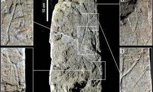 Details of the limestone block on which the image of the Lady of Arlanpe is engraved. Figure 5 of the study published in the journal Oxford Journal of Archaeology.