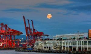 Harvest Moon 2014, Coal Harbor, Vancouver.