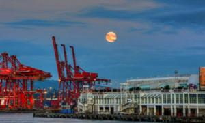 Harvest Moon 2014, Coal Harbor, Vancouver.