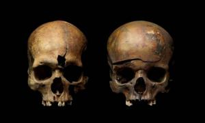 Skulls from mass grave in Yaroslavl, Russia, showing traces of violence. Source: Institute of Archaeology, Russian Academy of Sciences