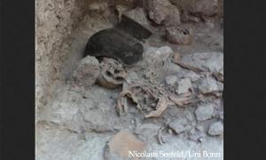Maya dismembered enemies