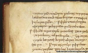 The written instructions for an onion and garlic eye salve from the Anglo-Saxon manuscript Bald's Leechbook. The remedy was found to kill MRSA bacteria.