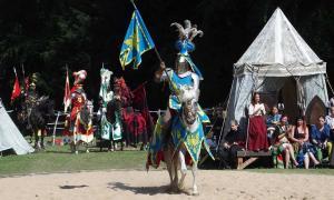 Medieval tournament reenactment.