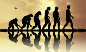 A new study suggests three key phases in human ancestry for scientists to focus future research