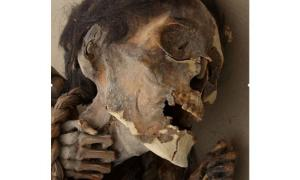 Pre-Columbian mummies Chile - arsenic poisoning