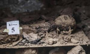 One of the newly-discovered mummies - Egypt