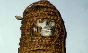 11th century Pre-Columbian mummy who has surprised scientists with antibiotic-resistant genes.