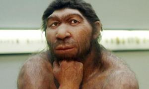 Neanderthals and their Thinking Ability