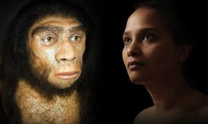 Neanderthals and humans interbred