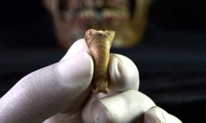 The 'Last Neanderthal Necklace' Has Been Found In Spain