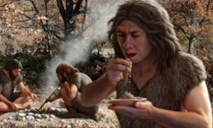 Neanderthals Cooking Food