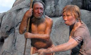 Researchers Want to Get the Dirt on How Much Neanderthals and Modern Humans had Sex