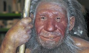 Neanderthal Hybrid