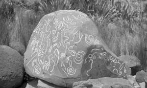 Ancient New Zealanders