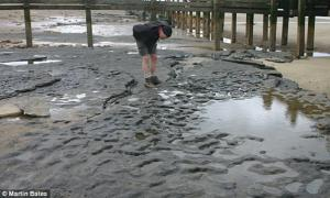 Oldest Footprints outside of Africa