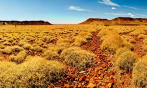 Pilbara, Australia where scientists discovered microbial remains in ancient rocks. Source: Terry / Adobe Stock.