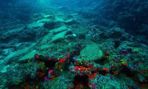 The 3,600-year-old shipwreck found in the Aegean Sea.