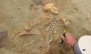 The full skeleton of one of the Indian pet monkeys found by Polish researchers in a pet cemetery in the ancient port of Berenice, Egypt.                        Source: Marta Osypińska / Science in Poland