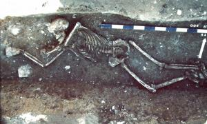 Lunel-Viel (Languedoc-Southern France). Victim of the plague thrown into a demolition trench of a Gallo-Roman house; end of the 6th-early 7th century. Source: 1990; CNRS - Claude Raynaud