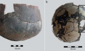 Inner and outer surfaces of pottery containing bone residue