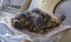 X-ray and CT scans of the mummified body show that the woman died when she was between 20-30 years old. (O. Leydo)