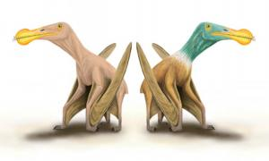 Battle Of The Pterosaurs! Britain vs China In Dinosaur Wrangle