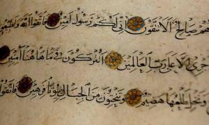 Muslims: The Origins of Human Beings