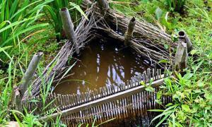 Ancient Eco Practices