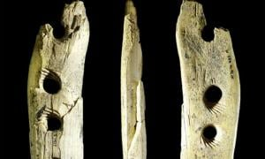 Rope making tool from mammoth ivory from Hohle Fels Cave in southwestern Germany, ca. 40,000 years old.