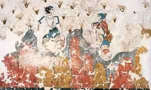 Saffron crocus flowers - Minoan fresco