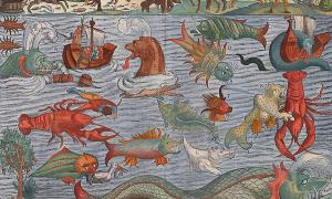 Illustration of a range of 'sea monsters' in Carta Marina (Ocean Map)