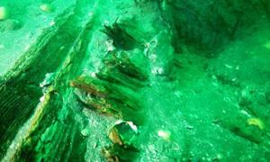 Shipwreck in Japan from Mongol Invasion