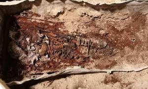 The skeletal remains of the girl found at the Alcázar burial were discovered with arms flexed and crossed over her thorax