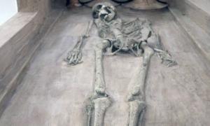 Skeletons of Harappan Civilization