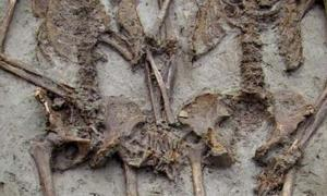 The skeletons buried in Italy have been holding hands for around 1500 years. Source: ArcheoModena