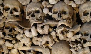 Would You Visit Five Centuries of Bones? The Scary Spanish Ossuary of Wamba