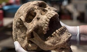 Human remains buried almost 3,000 years ago in southern Israel may help researchers finally solve the mystery of the Philistines' origins.