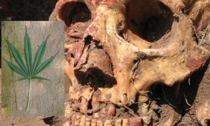 Yamnaya skull from the Samara region colored with red ochre.