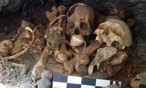 Strange Discovery Made in Mexican Cave, Including Mummified Macaw, Baby and Adult Remains