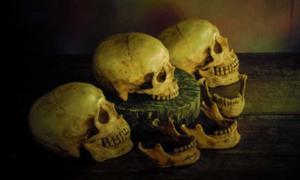 Incas sacrificed little girls and displayed their skulls. Source: dk_patt / Adobe Stock.
