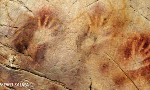 Neanderthals more sophisticated than currently believed
