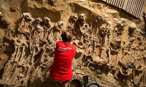 The scene at the supermarket, before the bones were removed