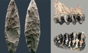Tools of Pre-Clovis Inhabitants