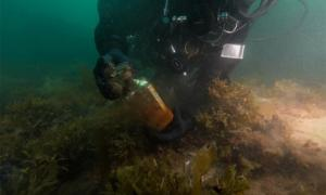 A Parks Canada underwater archeologist works about eight meters (26.25 ft.) below the surface of the water. Source: Underwater archeology team/Parks Canada