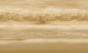 Life in Venus Clouds